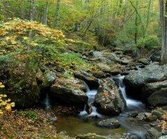 Anna Ruby Falls, near Unicoi State Park