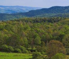 West Virginia Appalachian Mountains