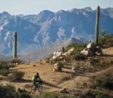 Arizona National Scenic Trail, Arizona