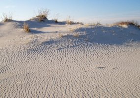Assateague Island National Seashore, Virginia