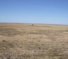 Buffalo Gap National Grassland, South Dakota