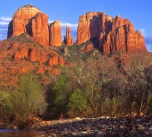 Coconino National Forest, Arizona