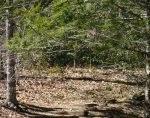 Devils Hopyard State Park