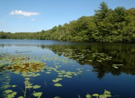 Fernwood Lake, west of Gloucester, MA