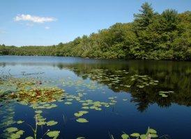 Fernwood Lake, west of Gloucester, MA