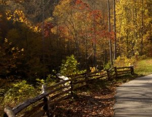 Forest Heritage National Scenic Byway, North Carolina