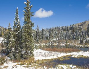 Grand Mesa National Forest, Colorado