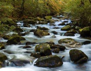 Middle Saluda South Carolina State Scenic River