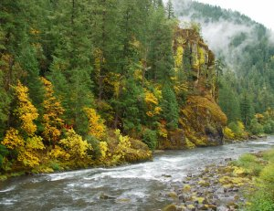 North Umpqua National River, Oregon