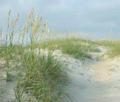 Outer Banks, North Carolina coast