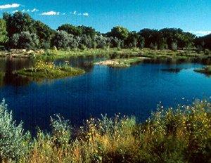 Rio Grande Nature Center State Park, New Mexico