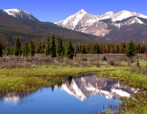 Reflections of Rocky Mountain National Park