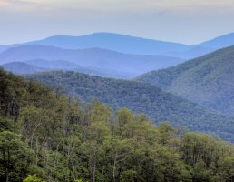 Shenandoah National Park, part of Blue Ridge Mountains, northern Virginia