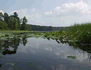 Sugar Cane National Recreation Trail, Louisiana