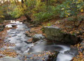 Maryland natural park wonders for Susquehanna state park cabins