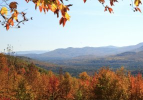 White Mountain National Forest, western Maine
